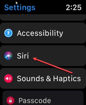 Apple Watch Siri Settings